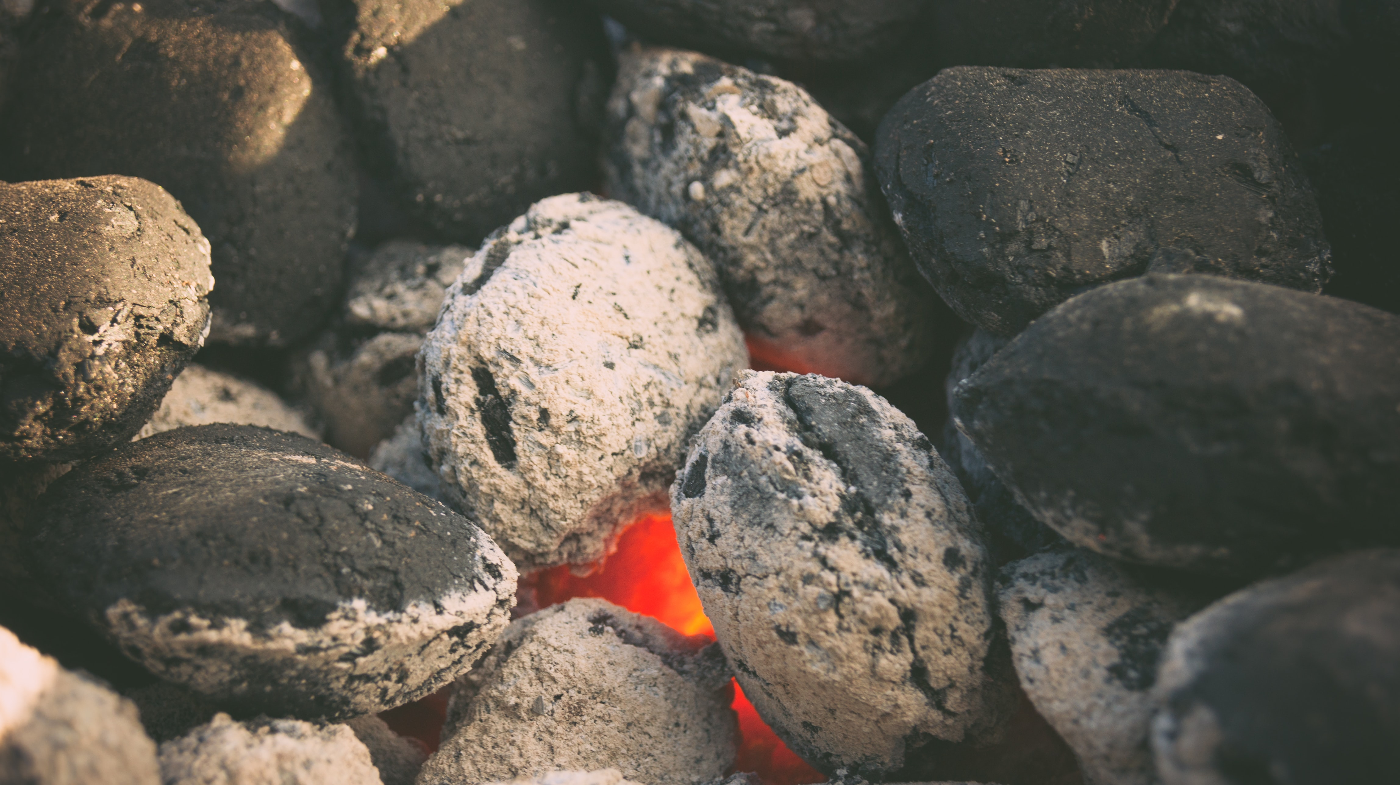 Feasibility Study and Design of a Briquette Manufacturing Plant